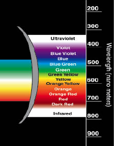 ultraviolet rays and the effects on the retina of the human eyes Many people fear the dangerous effects of ultraviolet (uv) rays on the skin, but few realize the danger imposed on their eyes whether from natural sunlight or artificial uv rays, uv radiation can damage the eye's surface tissues as well as the cornea and lens.