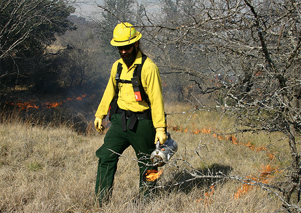 Fire management worker starting a controlled burn