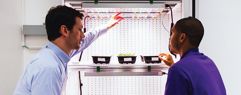 A NASA researcher looks at LED lights installed in a plant growth chamber with the lights' lead developer