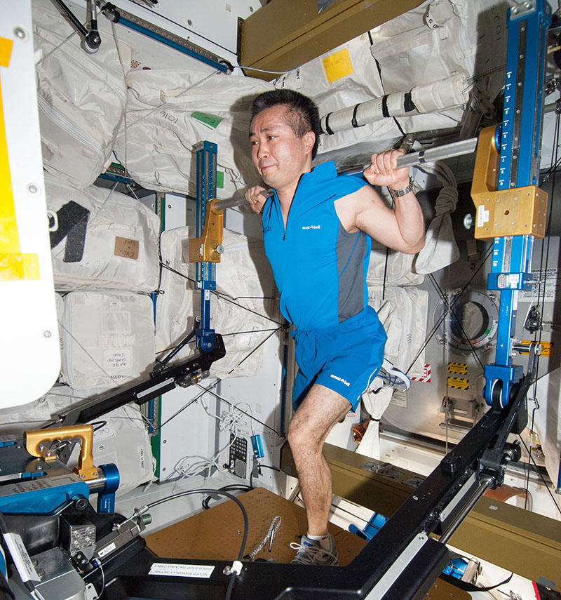 Japanese Aerospace Exploration Agency astronaut Koichi Wakata works out on the International Space Station