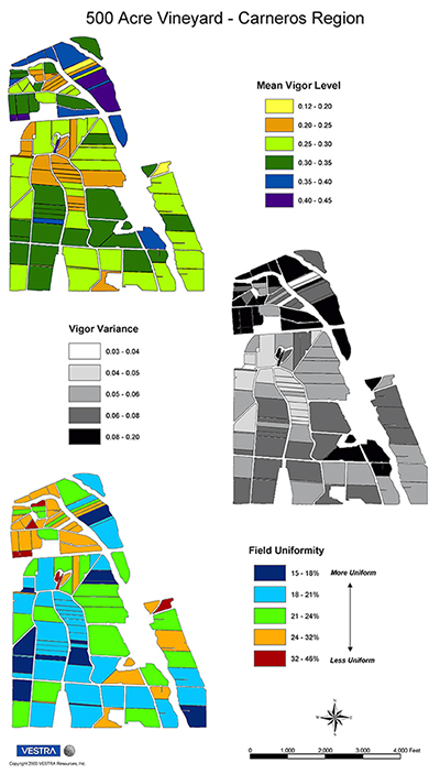 The Vineyard Block Uniformity Map