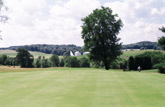 Golf club green with trees in background