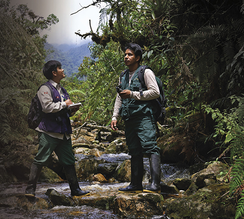 Park rangers patrolling protected forest in Peru
