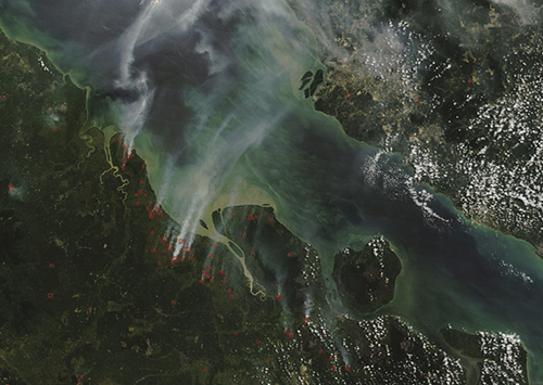 Satellite imagery of wildfire