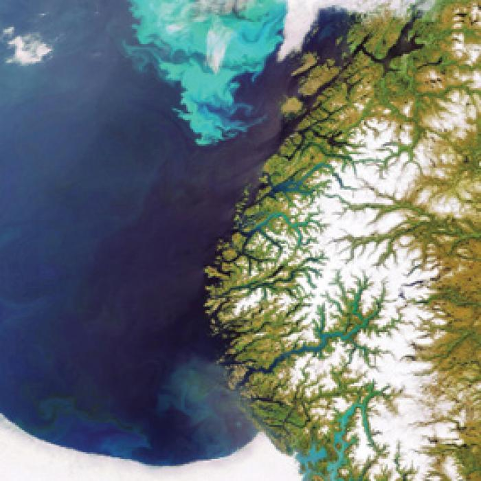 A satellite image of a coastline with a bright turquoise algal bloom in the water